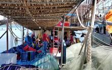 Ngư dân Quảng Nam trình báo bị tàu Trung Quốc cướp 2 tấn mực