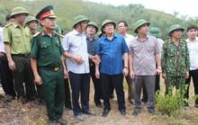 Phó Thủ tướng lý giải vì sao chưa dùng trực thăng chữa cháy rừng?