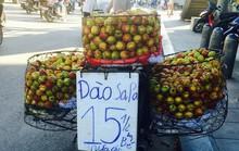 Thực hư xuất xứ đào Sapa siêu rẻ bán tràn đường
