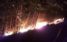 Đang cháy rừng ở Quảng Nam