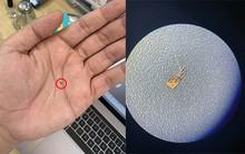 Chiêu lừa 'biến' iPhone lock thành quốc tế bằng sim ghép siêu nhỏ