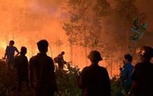 Giá đắt từ vụ cháy rừng