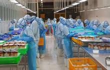 Doanh nghiệp xắn tay khai thác EVFTA