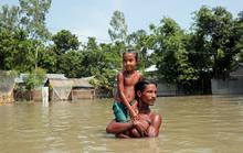 Lũ lụt ở Nam Á, số người chết tăng vọt