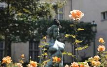 Người khỏa thân ở công viên Paris phàn nàn vì bị quấy rối