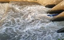 Sau cơn mưa, nước thải đen ngòm lại chảy tuôn xối xả ra biển Đà Nẵng
