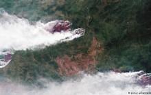 """Nga """"lạnh lùng"""" với đề nghị giúp chữa cháy rừng của Tổng thống Trump"""