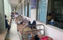 Vụ xịt thuốc diệt mối mọt: Thêm nhiều công nhân nhập viện