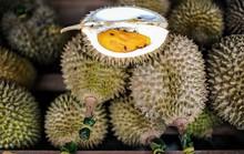 5 điều ít biết về vua trái cây sầu riêng