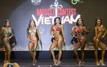 Ngắm dàn người đẹp bikini trên sàn Muscle Contest Việt Nam 2019