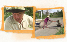 """[eMagazine] Vợ chồng cựu chiến binh ở Cà Mau """"ăn cơm nhà vác tù và hàng tổng"""""""