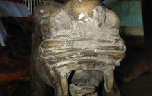 """Điều tra nhóm người thuê phương tiện bỏ nhiều tượng """"quái thú"""" 2 đầu xuống biển"""