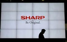 Sharp chuyển kế hoạch xây dựng nhà máy từ Trung Quốc sang Việt Nam