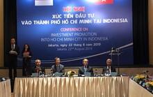 Xúc tiến đầu tư vào TP HCM tại Indonesia