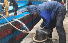 Trên đường vào bờ tránh bão số 4, tàu cá chở 16 ngư dân bất ngờ gặp nạn