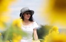 Phát sốt với vườn hoa hướng dương mới xuất hiện ở Quảng Nam