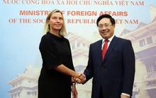 Đề nghị EU tiếp tục đóng góp vào duy trì hòa bình, ổn định ở Biển Đông