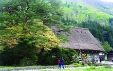Làng du lịch nổi tiếng nhất Nhật Bản không có khách sạn