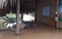 Một vùng rộng lớn ở Đồng Nai đang chìm trong nước, có nơi lút đầu trẻ