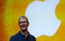 Tổng giám đốc Apple sử dụng khối tài sản 625 triệu USD như thế nào
