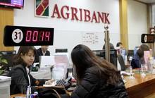 Agribank phát hành trái phiếu, lãi suất 8,1%/năm