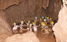 Đắm mình trong hang Tối