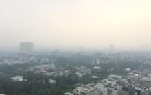 Không khí ở TP HCM đang gây hại trực tiếp đến sức khỏe