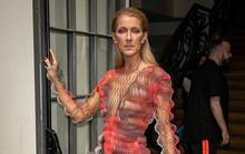 Bị chê gầy gò, họa mi Celine Dion phản pháo