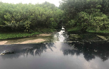 Người dân Quảng Nam bao vây nhà máy cồn vì để xảy ra sự cố tràn dầu