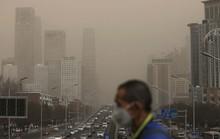 Tác động đáng ngại của không khí ô nhiễm lên trí não