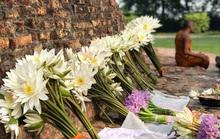 Ngắm 4 thánh tích gắn với cuộc đời Đức Phật mà ai cũng ao ước một lần chiêm bái