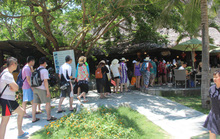 37 du khách Trung Quốc nhập viện sau khi ăn sáng tại nhà hàng ở Nha Trang