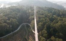 Khu du lịch Thung lũng Tình yêu chặt phá rừng thông, xây lụi cầu đáy kính không phép
