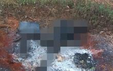 Đi thăm rẫy, hoảng hồn phát hiện xác chết đã cháy đen