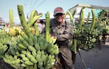 Cận cảnh chợ chuối mật mốc lớn nhất miền Trung ngày cận Tết