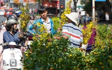 Bất ngờ chợ hoa chiều 30 Tết