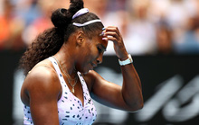 Serena Williams cùng loạt danh thủ bại trận ở Giải Úc mở rộng 2020