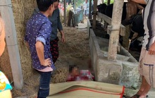 Giám đốc Công an TP HCM lên tiếng về vụ bắn chết 4 người ở Củ Chi