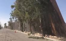 Bức tường biên giới của ông Donald Trump nghiêng ngả vì gió