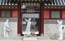 Virus corona: Dân Hàn Quốc ném trứng bộ trưởng, phản đối đưa đồng hương từ Vũ Hán về