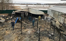 Vụ cháy 8 người chết tại Nga: Phát hiện hộ chiếu Việt Nam bị cháy dở tại hiện trường