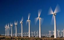 Trà Vinh sẽ có 2 nhà máy điện gió hơn 4.000 tỉ đồng