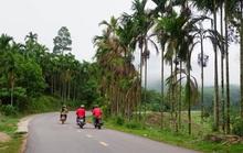 Các tỉnh, thành liên kết để sớm khôi phục du lịch