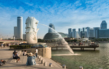 Singapore đón khách Việt Nam từ ngày 8-10