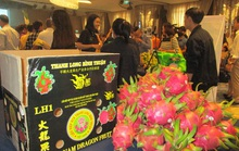 Nâng chất lượng rau quả xuất sang Trung Quốc