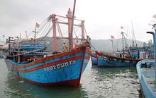 Bị chìm trên đường tránh bão, 26 thuyền viên của 2 tàu cá Bình Định mất tích