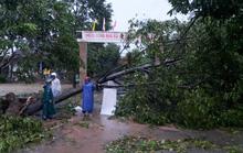 Thống kê chính thức thiệt hại do bão số 9 gây ra tại Thừa Thiên - Huế