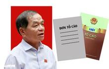 ĐBQH Lê Thanh Vân: Tố cáo sai có thể khiến người bị oan mất cơ hội chính trị