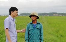 Huyện cấp 8 tạ lúa giống cho dân, xã ngâm kho hết hạn nên đem bán cho vịt ăn