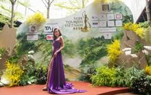 Miss Tourism Vietnam 2020 quảng bá Việt Nam điểm đến Di sản toàn cầu